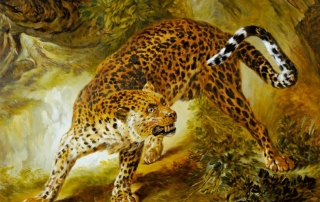 Leopard Study from Oudry