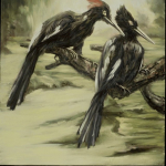 Imperial Woodpeckers/Extinct 1956